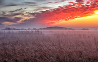 Prairie at dawn, Battelle Darby Metro Park, Franklin County, Ohio, November 25, 2018