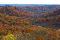 Shawnee State Forest, Scioto County, Ohio, November 1, 2015